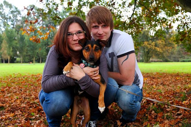 Пёс обрёл семью