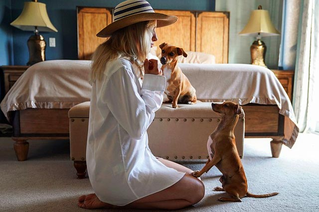 Девушка любит собак