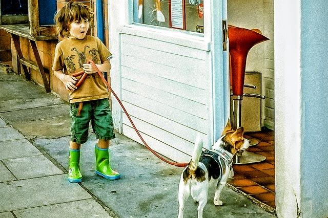 Ребёнок гуляет с собакой