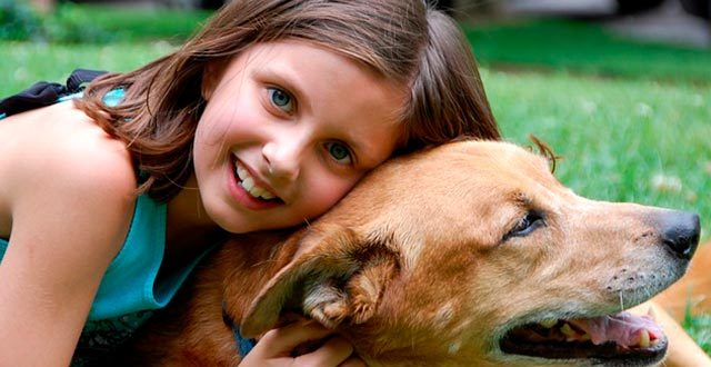 Канистерапия для детей – лечение собаками
