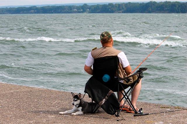 Рыбак и собака
