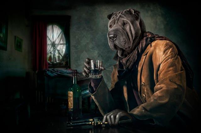 Собака пьет алкоголь