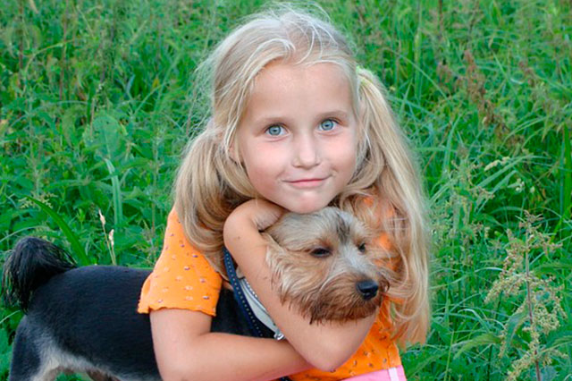 Возраст собаки относительно человека