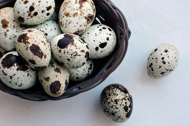 Перепелиные яйца