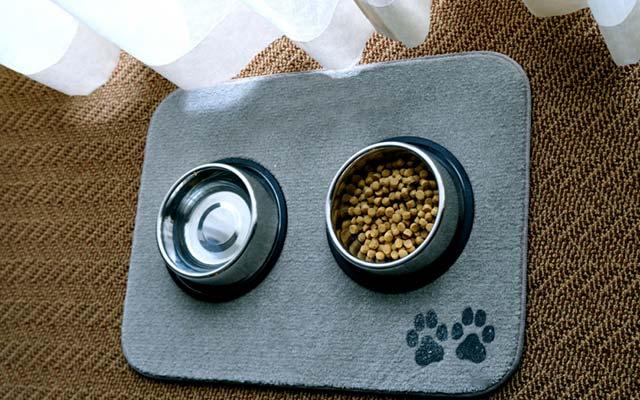 Миски для собак