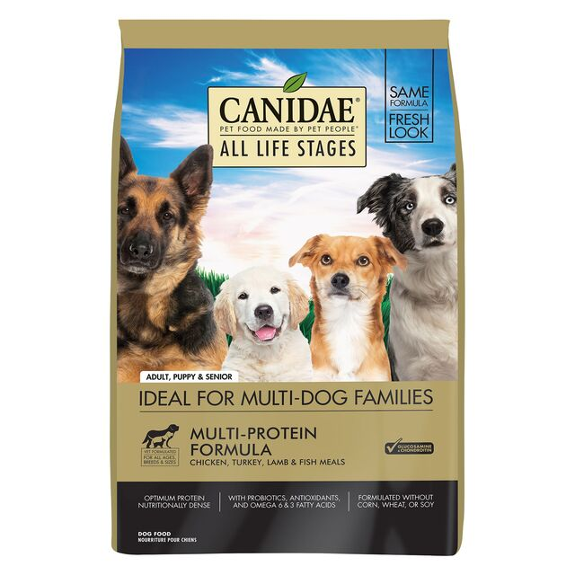 Ветеринары рекомендуют: 27 проверенных кормов для здоровья вашей собаки