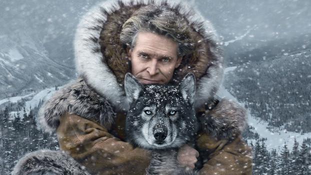 40 самых интересных фильмов про собак для семейного просмотра с детьми