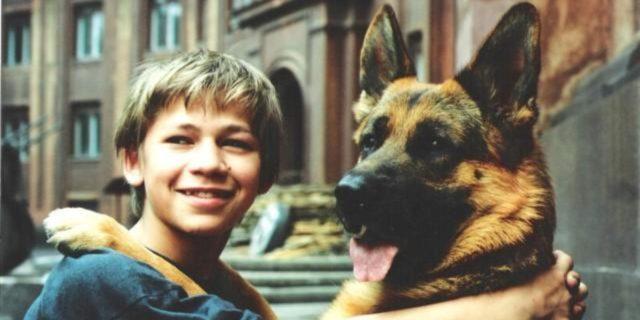 лучшие фильмы про собак 15