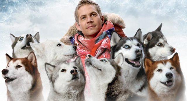 лучшие фильмы про собак 21