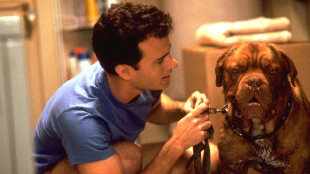 Лучшие зарубежные комедии про собак 1