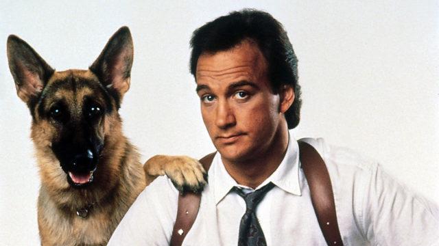 Лучшие зарубежные комедии про собак2