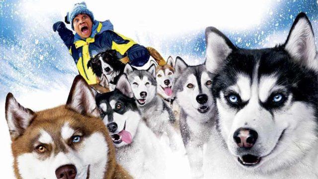 Лучшие зарубежные комедии про собак 4